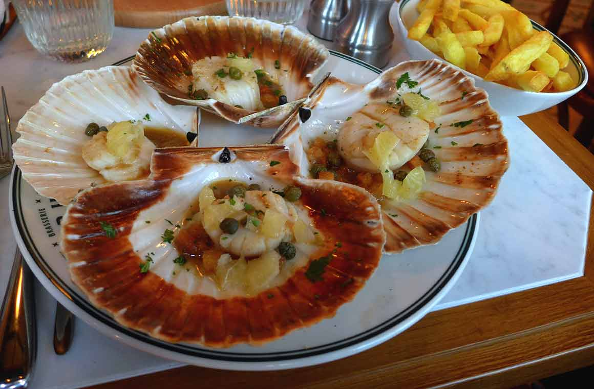 Brasserie Victor Hugo, coquilles Saint-Jacques