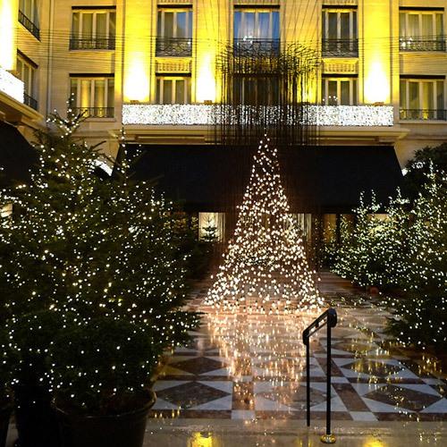 Restaurant Le Cinq : Décoration et sapins de Noël